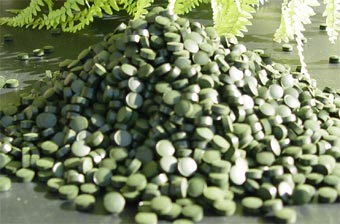 Pilr of Organic Spirulina tablets